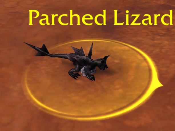 petrified lizard